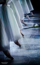 Ballet Dancers Dancing